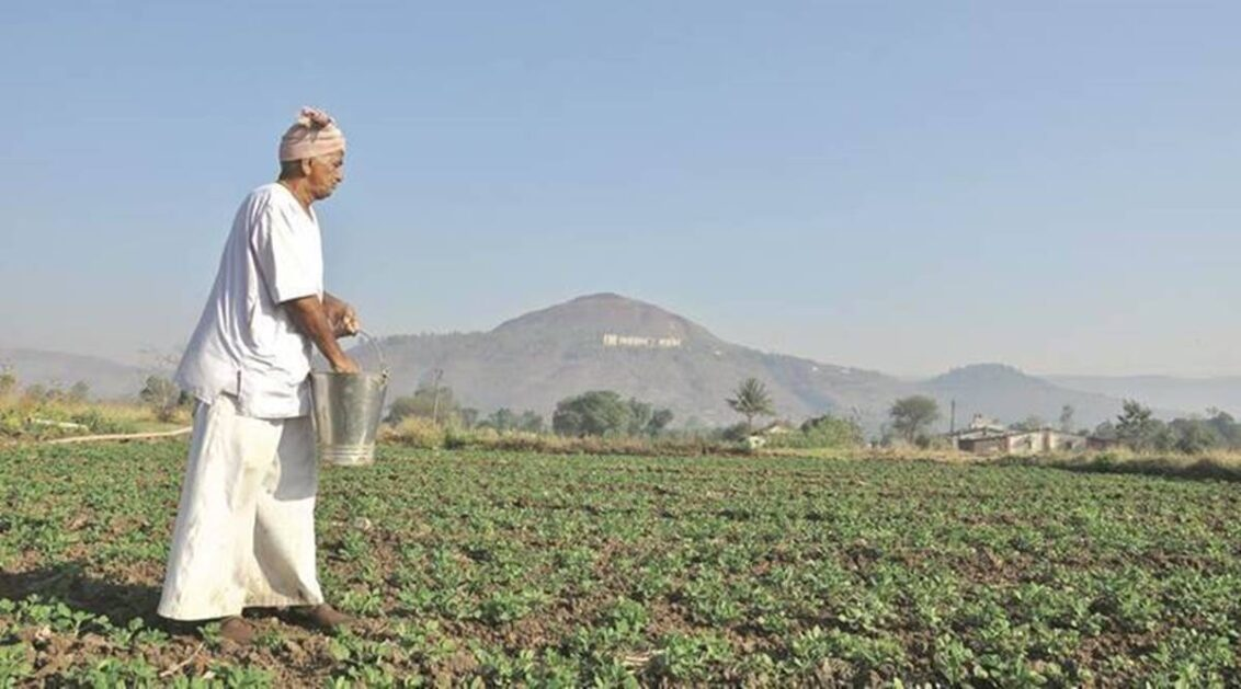 For easy access to schemes, Govt plans 12-digit unique ID for farmers, database