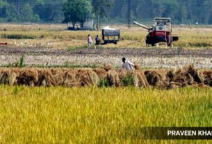 India gets first herbicide-tolerant & non-GM rice varieties; launch today