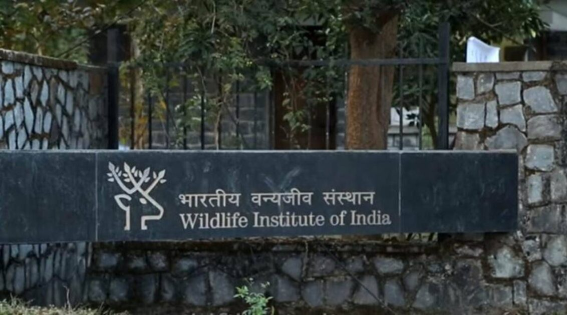 Over 2 years after CAG red flags: WII director takes unilateral decision to keep MSc & PhD courses 'in abeyance'