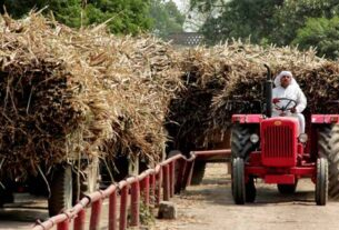 At end of sugar season, arrears to cane farmers lowest in 4 years