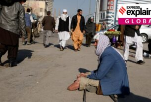 Explained: What is causing acute food insecurity in Afghanistan?